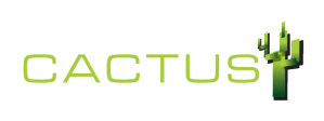 logo CACTUS accounting services bonaire ocan caribiscb